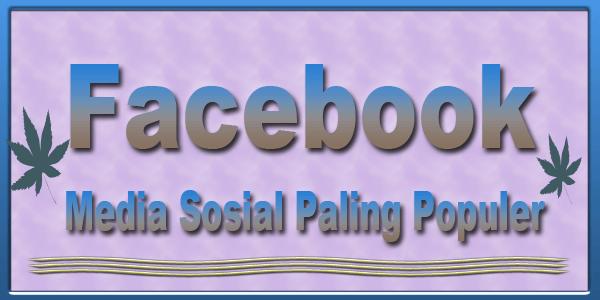 facebook media sosial