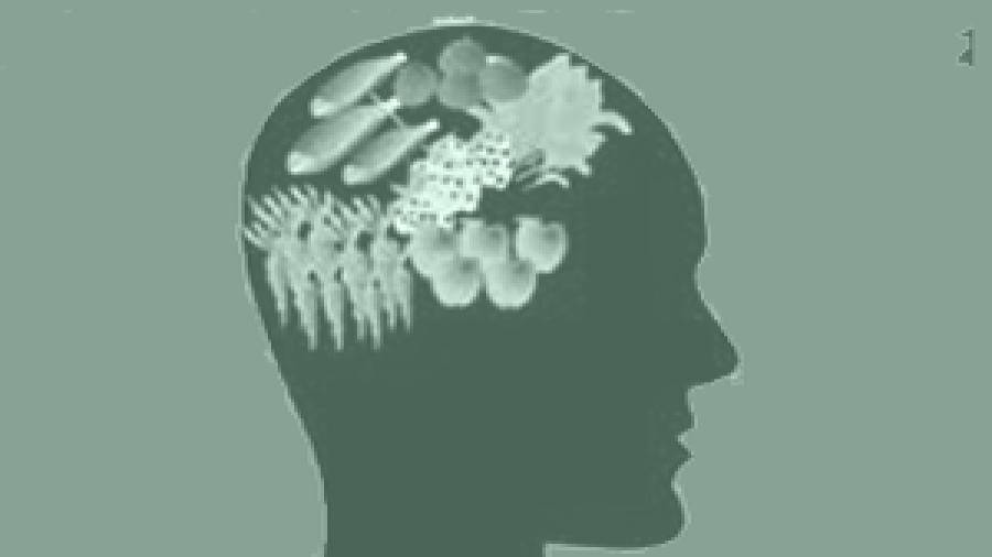 Makanan Otak Yang Perlu Anda Ketahui